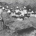 Bacubirito meteoritas
