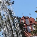 Bernardinų sodas atviras vilniečiams ir miesto svečiams