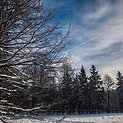 Balta žiema sostinėje