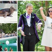 Iliuzionistas Mantas Wizard Kauno zoologijos sode rodė triukus su ruoniu Kajumi
