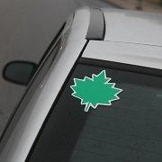 Pradedančio vairuotojo dienoraštis IX: klevo lapo reikia ne man vienai