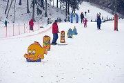 Šaltis pažadino Lietuvos slidinėjimo vietas – visur ruošiamos trasos