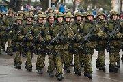 Estijos gynybos ekspertas: Baltijos šalys dar nesaugios