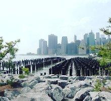 """Niujorkas: kur dingo """"smaragdo miesto"""" burtininkas?"""