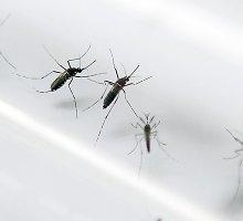 ULAC pateikia rekomendacijas vyksiantiems ir grįžusiems iš Zika viruso teritorijų