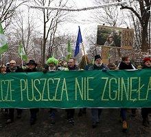Lenkijoje pradėtas kirsti unikalus miškas