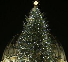 Vatikane sužibo Kalėdų eglė