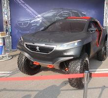 """Verva Street Racing"" fiesta Lenkijoje alsuoja Dakaro lenktynių dvasia"