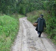 Kaišiadorių rajono miškuose grybavęs vyras rastas negyvas