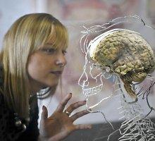 Kaip haliucinogeniniai grybai pakeičia mūsų smegenis?