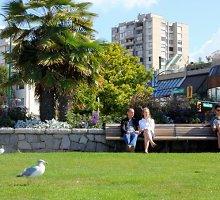 Kurie pasaulio miestai patys ekologiškiausi?