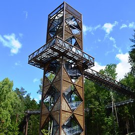 Anykščių TIC/Vilandos Reikalienės nuotr./Apžvalgos bokštą galima pasiekti taku, laiptais arba keltuvu