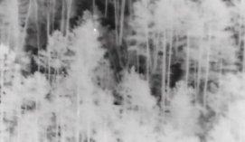 Naktį miške pasiklydusią senolę išgelbėjo ore ir žemėje dirbę pasieniečiai