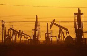 Susitarimas su Iranu naftos barelio kainą sumažintų iki 30 dolerių