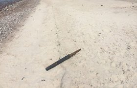 Parlamentarė Agnė Bilotaitė laukiniame paplūdimyje rastą žvejų tinklų kaištį palaikė sprogmeniu