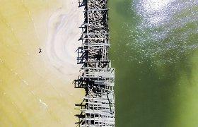 Baltijos stebuklai: ant Šventosios molo karaliauja kirai ir žuvėdros