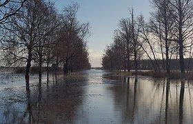 Pamarį skandina potvynis