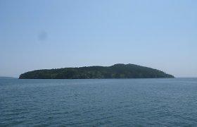 7 salos, kurias okupavo gyvūnai