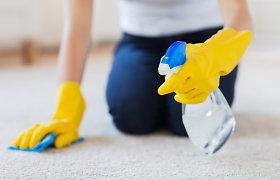 Gudrybės, kurios palengvins namų buitį