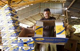Pasirašęs prekybos susitarimą su ES Ekvadoras tikisi padidinti eksporto apsukas