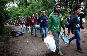 Pabėgėliai įdarbinimo klausimais bus konsultuojami jau Rukloje