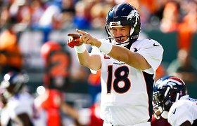"""""""Super Bowl 50"""" belaukiant: įdomiausi faktai apie svarbiausią JAV sporto renginį"""