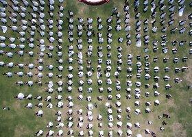 Masinė vestuvių ceremonija Kinijoje