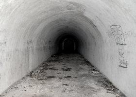 Šikšnosparnių rojus Kauno tvirtovės III-jame forte