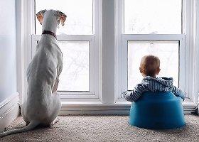 Tėvų užfiksuota jauki kūdikio ir šuns draugystė