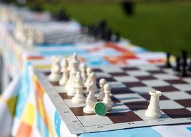 Kaune surengtas stalo žaidimų piknikas
