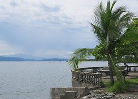 Osa pusiasalis Kosta Rikoje – biologiškai aktyviausia žemės vieta