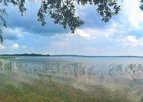 Pažintį su mišku, ežeru ir pelke dovanojantis Šeirės pažintinis takas