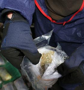 Rusijoje su narkotikais sulaikytas lietuvis aiškino, kad kanapėmis lesino paukščius