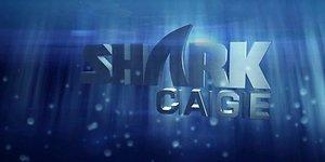 """Antroji TV šou """"Shark Cage"""" serija: interneto atrankos laimėtojas prieš pokerio meistrus"""