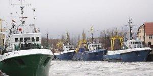 Klaipėdos žvejai verčiami pūdyti tonas laimikio
