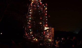 Veriškių kaimo bendruomenė papuošė savo Kalėdų eglę