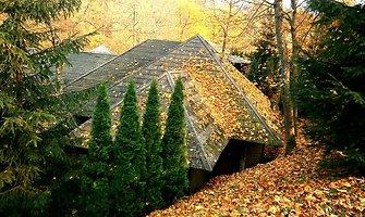 Koks gražus lietuviškas ruduo!