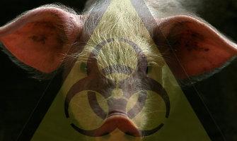 Rusijoje toliau registruojami kiaulių maro genomo baltarusiškuose mėsos produktuose faktai