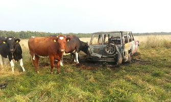 Šilutės rajone sudegė automobilis