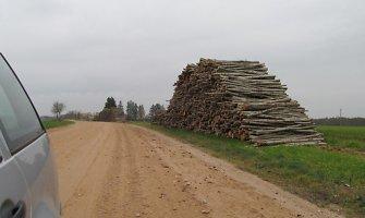 Alaburdiškių miške įkliuvo medieną vogęs Alytaus gaisrininkas su kompanija