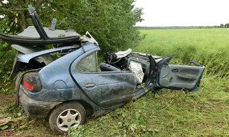 """Padotnuvio kaime vairuotojas nesuvaldė """"Renault Megane"""" ir išvertė medį"""