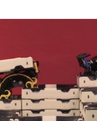 Robotų-termitų būrys stato pilis be žmogaus pagalbos