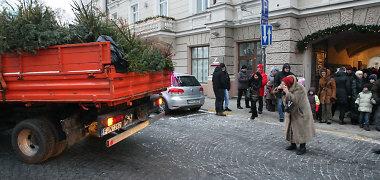 """Vilniuje rengiama tradicinė šventė """"Lik sveika, Kalėdų eglute"""""""
