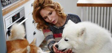 Kaip atsikratyti baisios šunis kankinančios ligos?