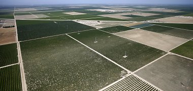 Alytaus regiono ūkininkai laukus tręš dumblu