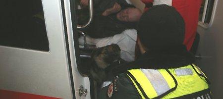 Ištikimas šuo neleido medikams artintis prie alkoholiu apsinuodijusio benamio šeimininko