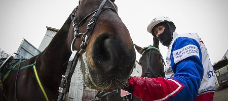 Žvarbių Sartų žirgų lenktynių puošmena – trys rekordai