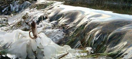 Skaitytojo nuotraukos: atšalusios naktys kausto vandens telkinius Šiaurės Lietuvoje