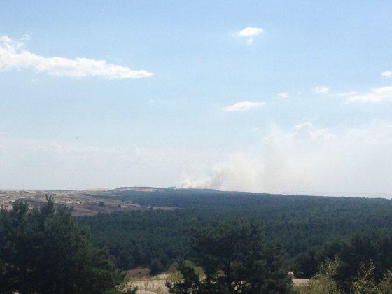 D. Jasaičio nuotr. /Karaliaučiuje netoli Nidos dega miškas