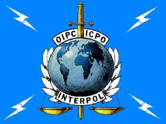 Interpolo iliustr./Interpolo emblema